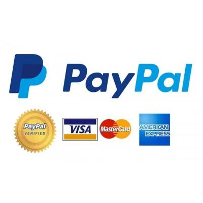 سرویس پرداخت و انتقال پول آنلاین پی پال