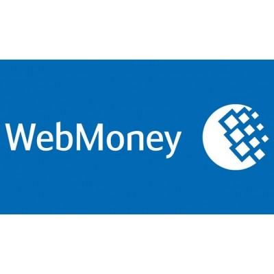 خرید دلار وب مانی توسط ما